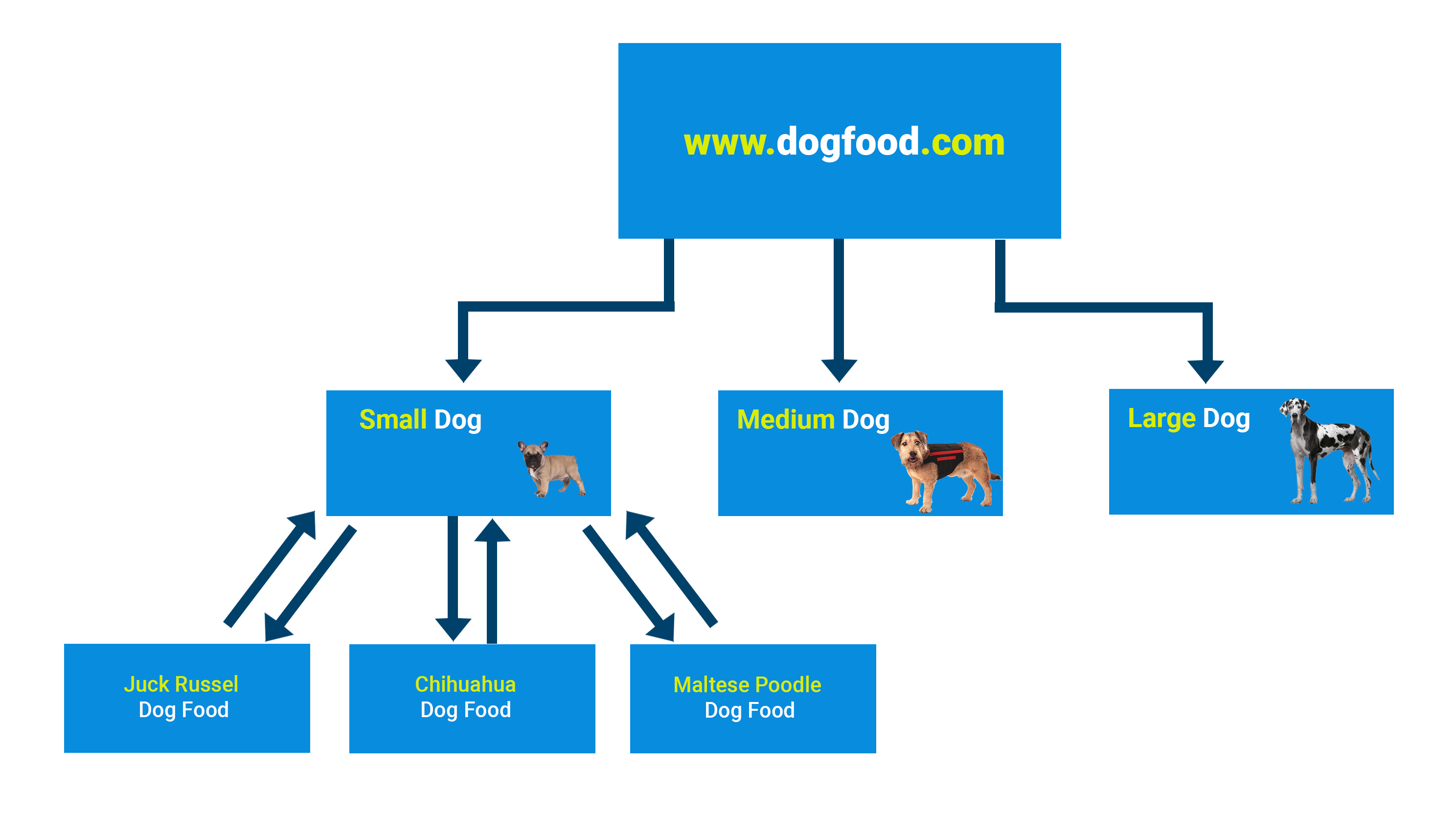 Dog food internal link silos