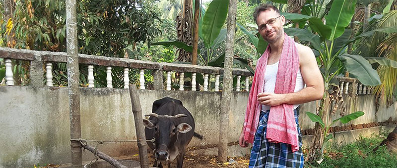 With teaching jobs in Cambodia, making friends with cows is optional