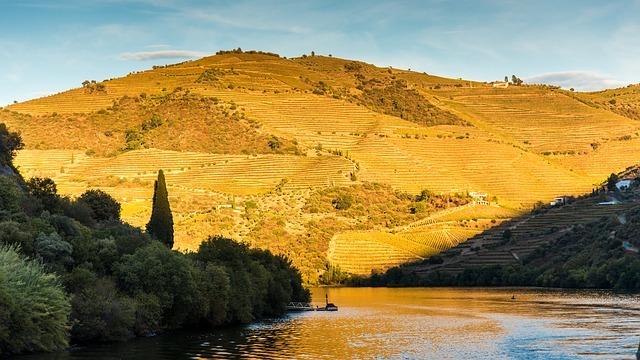 the douro river in portugal