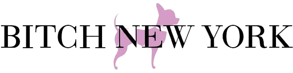 Bitch New York - logo on transparent background png